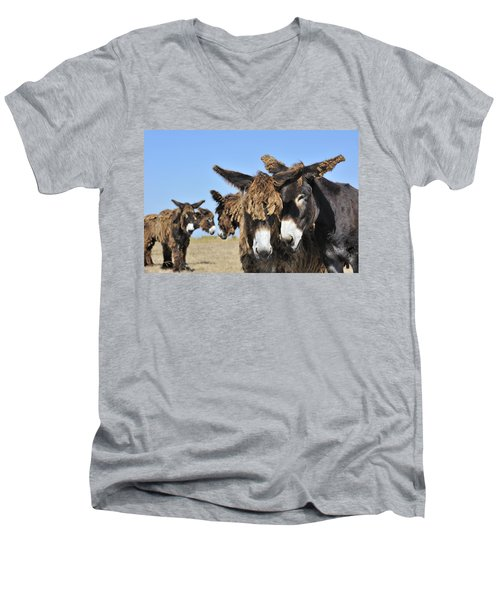 Men's V-Neck T-Shirt featuring the photograph Poitou Donkey 3 by Arterra Picture Library