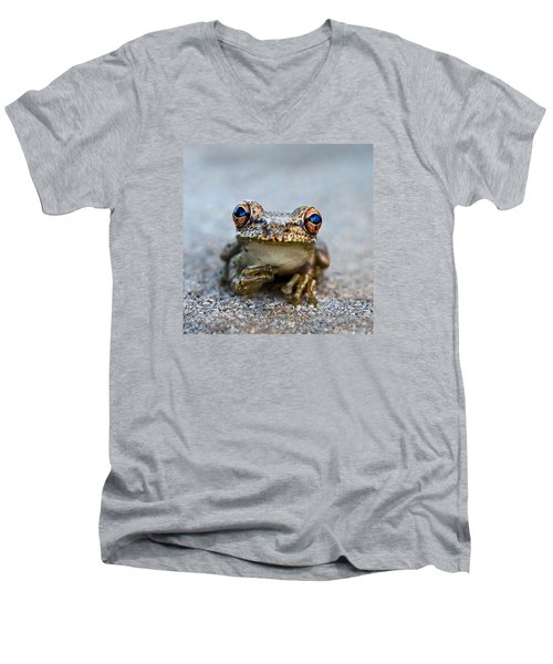 Pondering Frog Men's V-Neck T-Shirt by Laura Fasulo