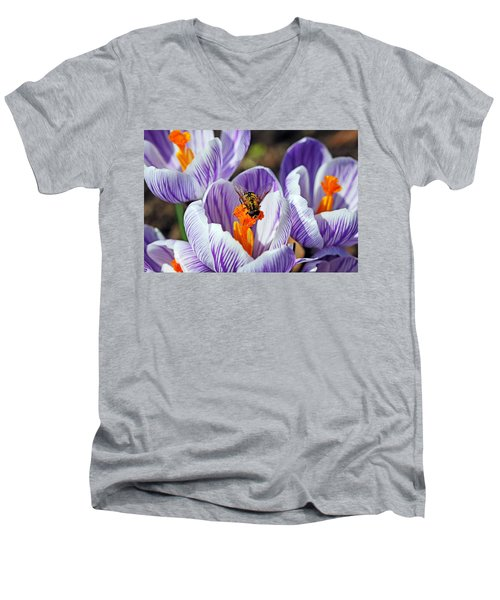 Men's V-Neck T-Shirt featuring the photograph Popping Spring Crocus by Debbie Oppermann