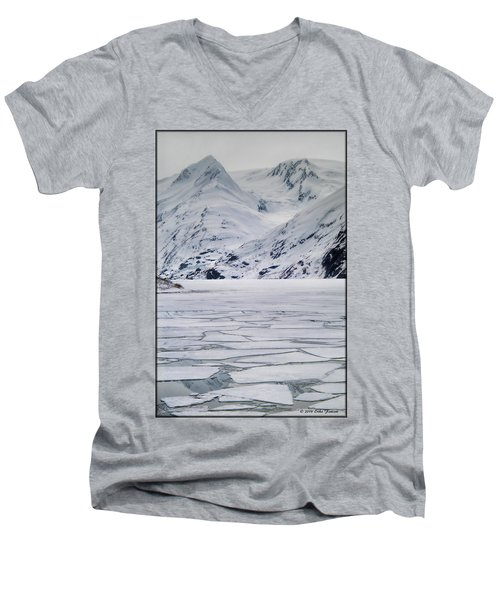 Portage Lake Men's V-Neck T-Shirt