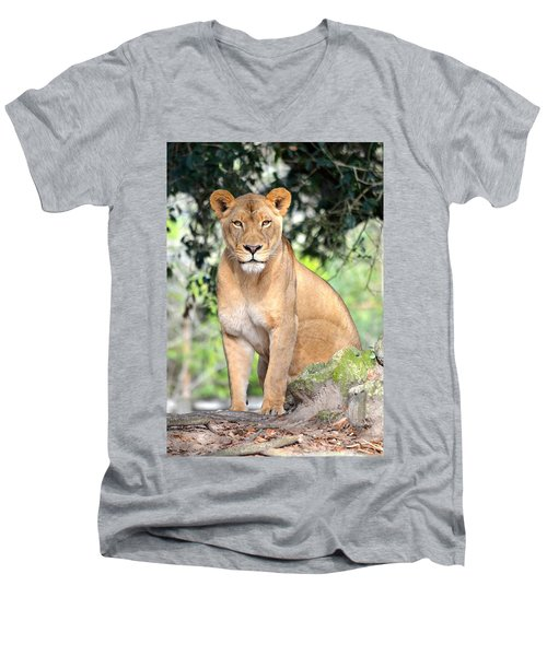 Portrait Of A Proud Lioness Men's V-Neck T-Shirt