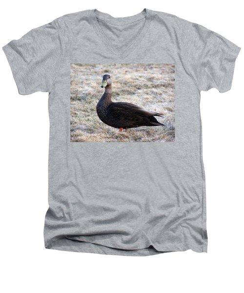 Posing For The Camera Men's V-Neck T-Shirt