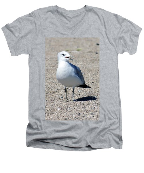 Men's V-Neck T-Shirt featuring the photograph Posing Gull by Debbie Hart