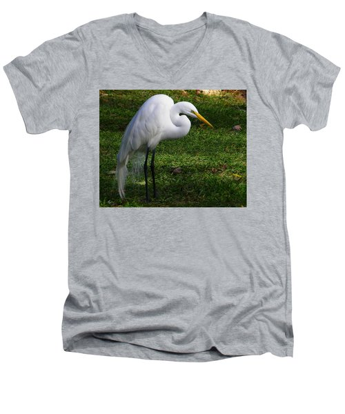 Posing Prettily Men's V-Neck T-Shirt