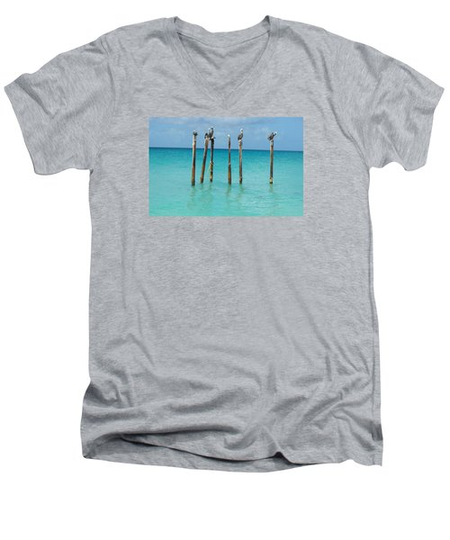Posted Seagull Men's V-Neck T-Shirt by David and Lynn Keller
