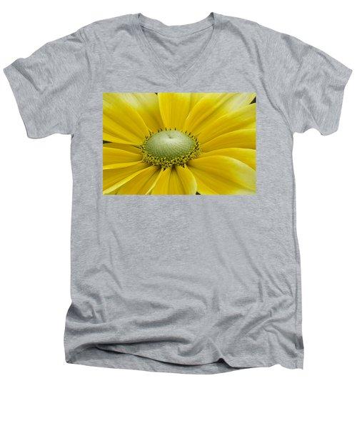 Prairie Sun Men's V-Neck T-Shirt