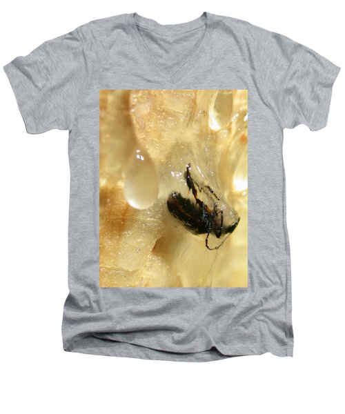 Preserved Men's V-Neck T-Shirt