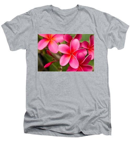 Pretty Hot In Pink Men's V-Neck T-Shirt by Denise Bird