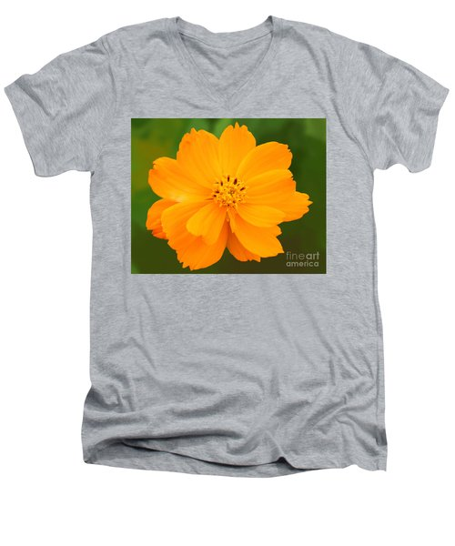 Men's V-Neck T-Shirt featuring the photograph Pretty In Orange by Mariarosa Rockefeller