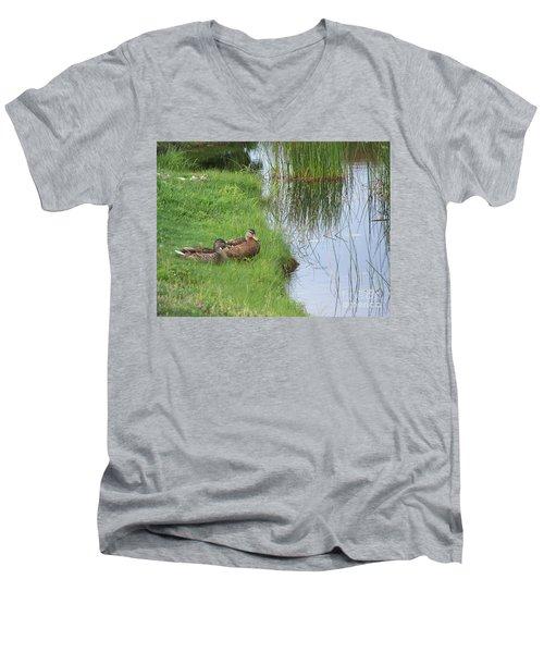 Mated Pair Of Ducks Men's V-Neck T-Shirt