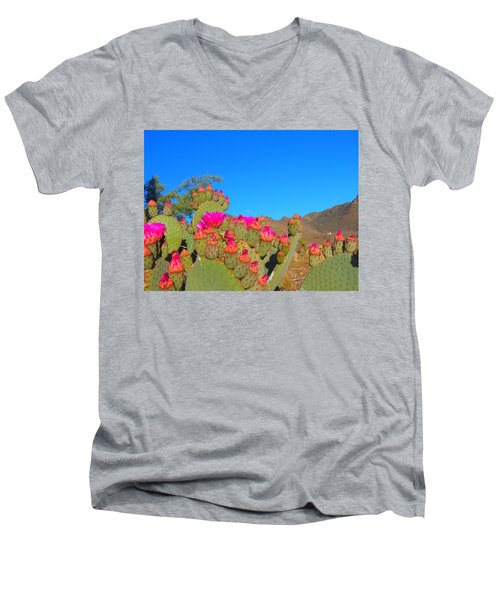 Prickly Pear Blooming Men's V-Neck T-Shirt