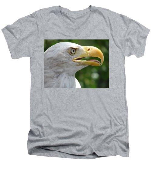 Pride Men's V-Neck T-Shirt by Randy J Heath