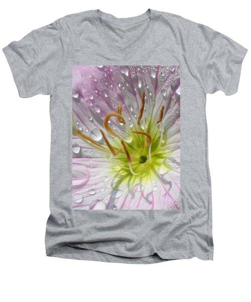 Primrose Men's V-Neck T-Shirt