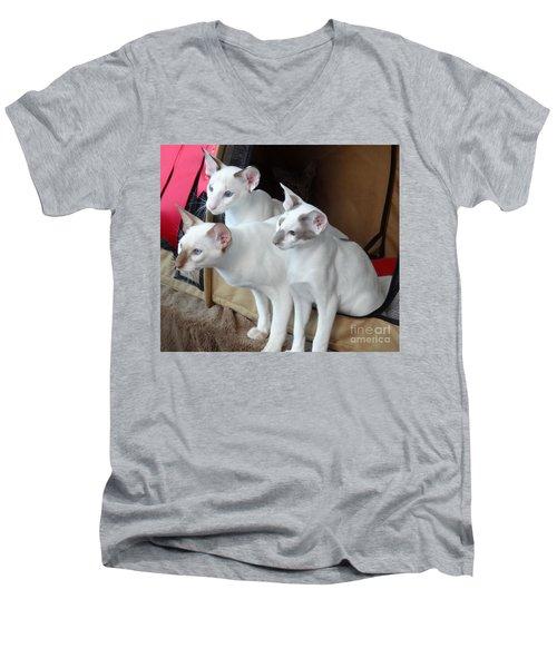 Prize Winning Triplets Men's V-Neck T-Shirt