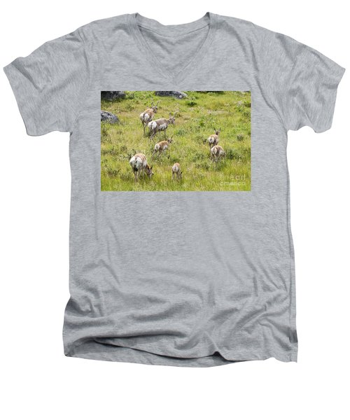 Men's V-Neck T-Shirt featuring the photograph Pronghorn Antelope In Lamar Valley by Belinda Greb