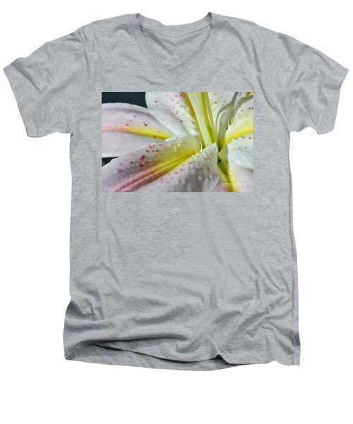 Pure And Fragrant Men's V-Neck T-Shirt