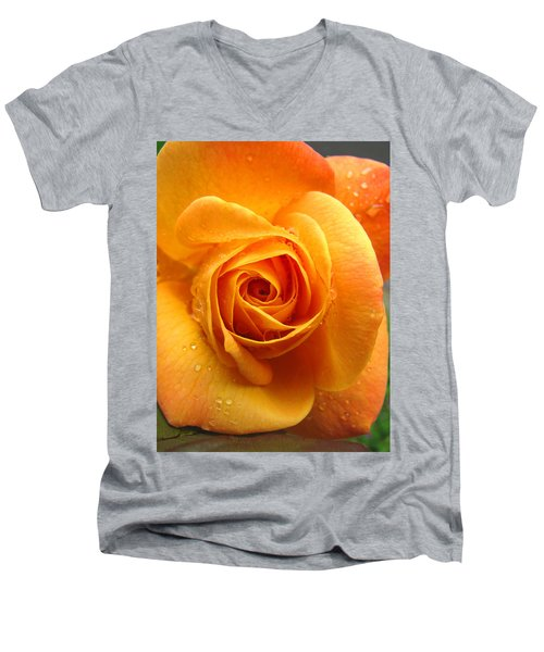 Men's V-Neck T-Shirt featuring the photograph Pure Gold - Roses From The Garden by Brooks Garten Hauschild