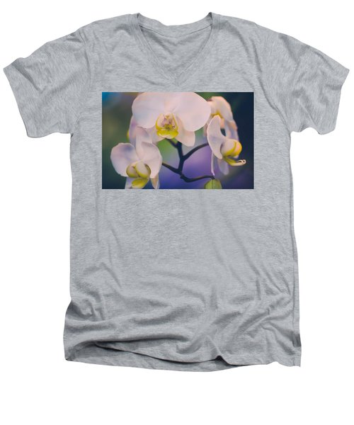 Pure Men's V-Neck T-Shirt by Sara Frank
