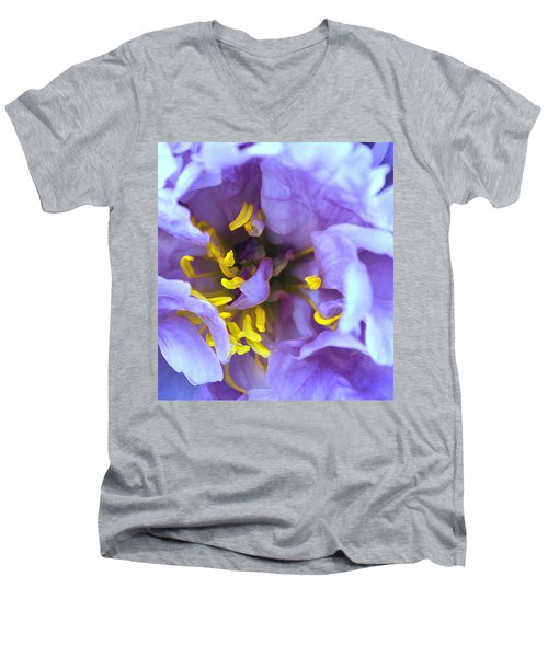 Purple Beauty Men's V-Neck T-Shirt