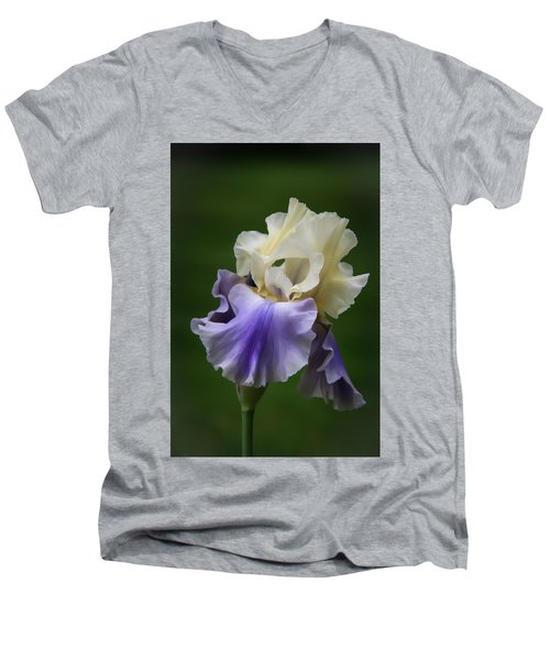 Men's V-Neck T-Shirt featuring the photograph Purple Cream Bearded Iris by Patti Deters
