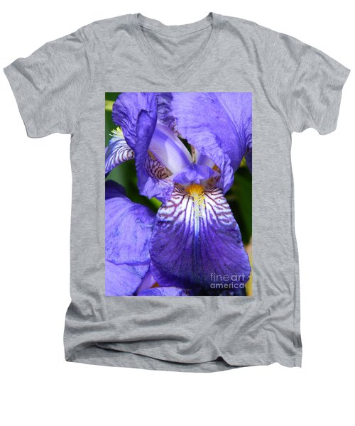Purple Iris Men's V-Neck T-Shirt by Chalet Roome-Rigdon