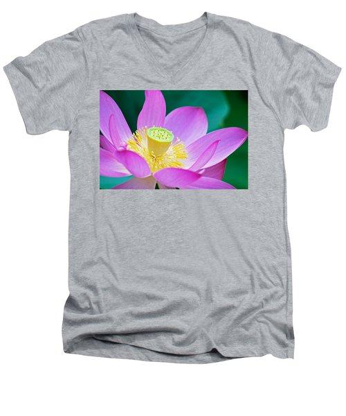 Purple Lotus Blossom Men's V-Neck T-Shirt by Michael Porchik
