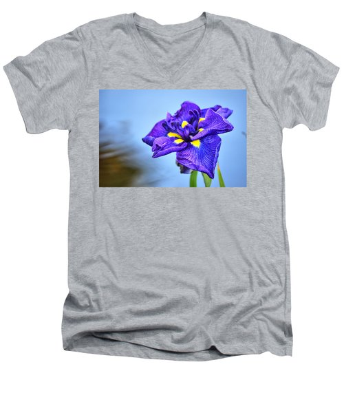 Purple Pond Iris Men's V-Neck T-Shirt