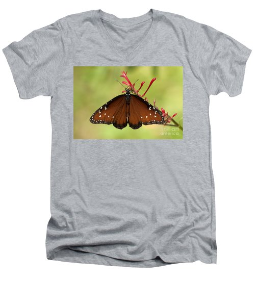 Queen Butterfly Men's V-Neck T-Shirt