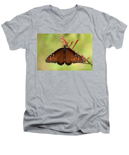 Queen Butterfly Men's V-Neck T-Shirt
