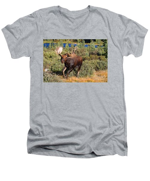 Charging Bull Men's V-Neck T-Shirt