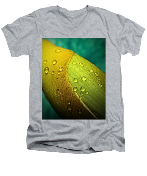 Rain Wrapped Men's V-Neck T-Shirt