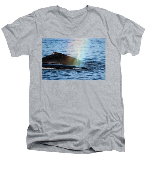 Rainblow Men's V-Neck T-Shirt