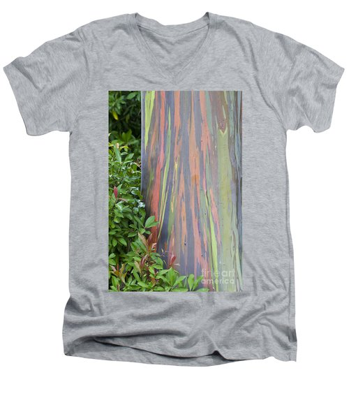Rainbow Eucalyptus Men's V-Neck T-Shirt by Bryan Keil