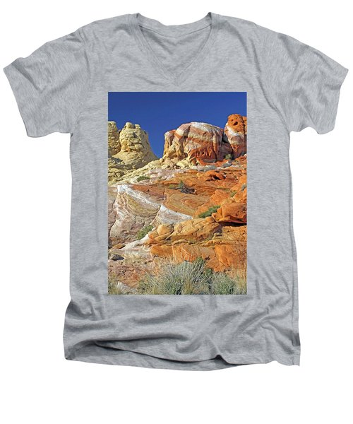 Rainbow Land Men's V-Neck T-Shirt