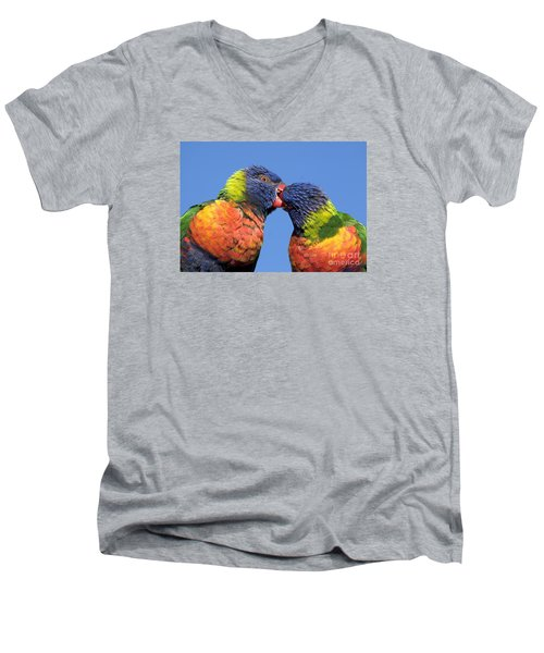 Rainbow Lorikeets Men's V-Neck T-Shirt