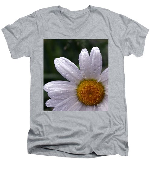 Rainy Day Daisy Men's V-Neck T-Shirt by Kevin Fortier