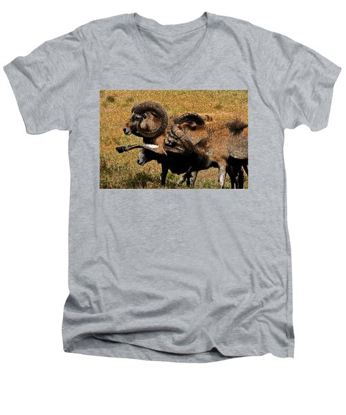 Men's V-Neck T-Shirt featuring the photograph Rams At Half-time by Doc Braham