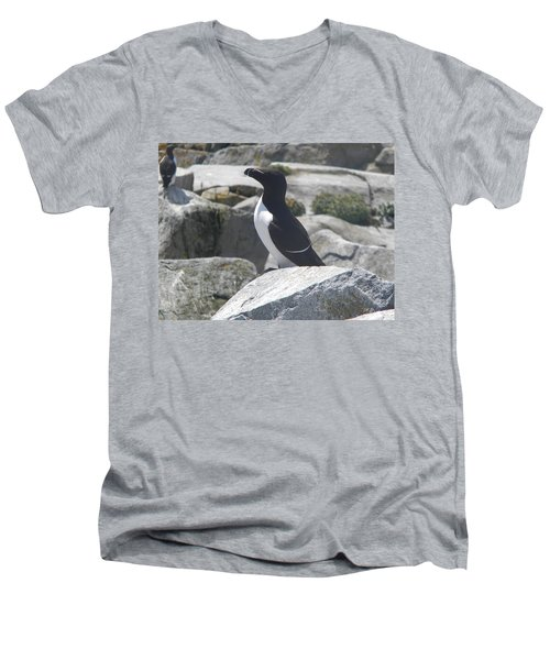 Razorbill Men's V-Neck T-Shirt