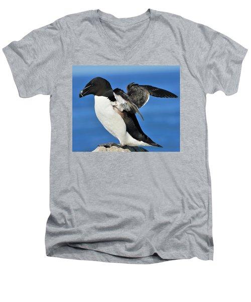 Razorbill Men's V-Neck T-Shirt by Tony Beck