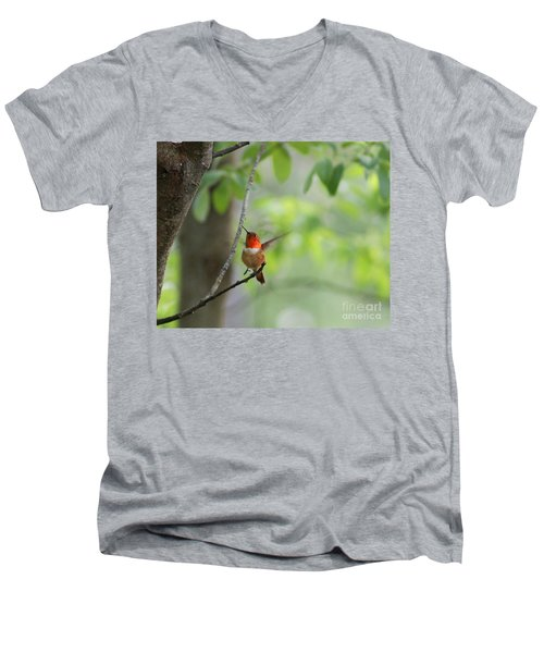 Ready For Take-off Men's V-Neck T-Shirt