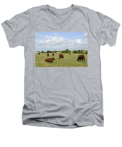 Men's V-Neck T-Shirt featuring the photograph Red Angus Cattle by Charles Beeler