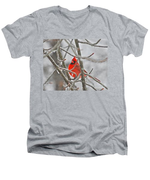 Red Cardinal Northern Bird Men's V-Neck T-Shirt