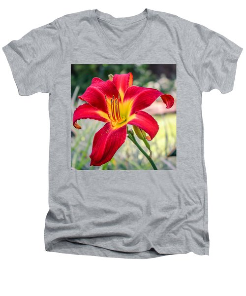 Men's V-Neck T-Shirt featuring the photograph Red Daylily by Rob Sellers