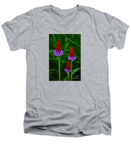 Men's V-Neck T-Shirt featuring the photograph Red Hot Pokers by Cynthia Lagoudakis