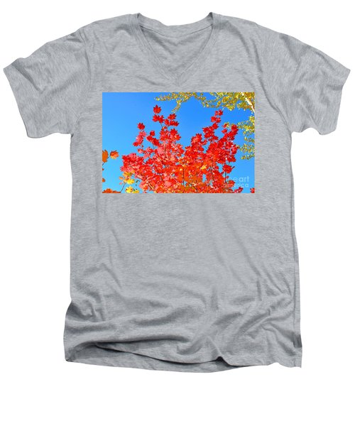 Men's V-Neck T-Shirt featuring the photograph Red Leaves by David Lawson