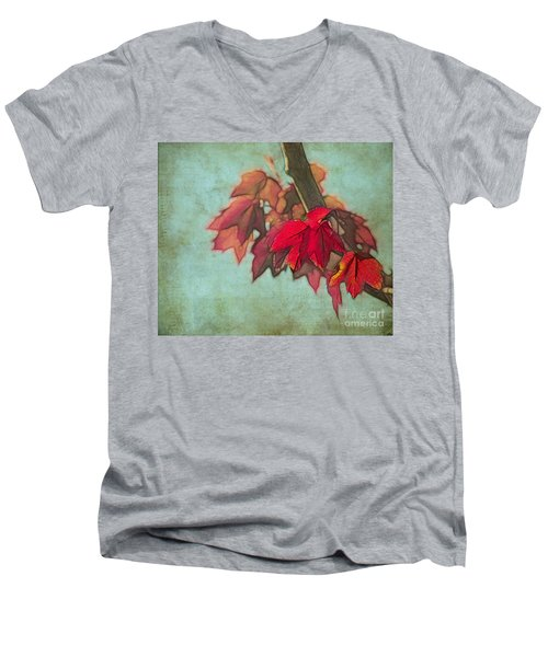 Red Maple Men's V-Neck T-Shirt by Judi Bagwell