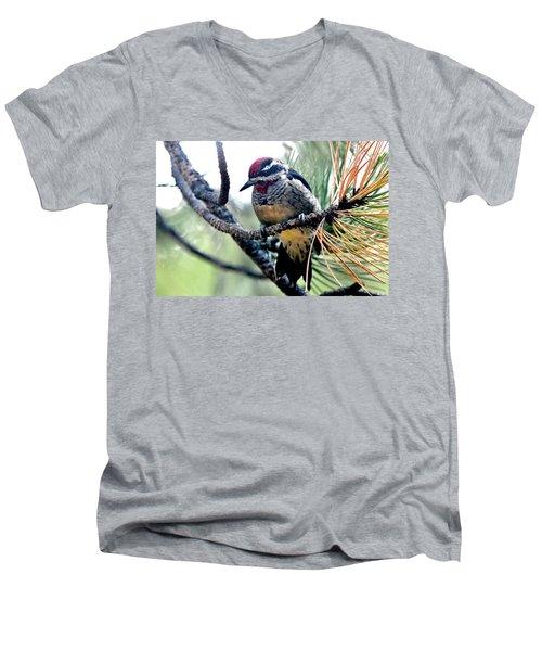 Red-naped Sapsucker On Pine Tree Men's V-Neck T-Shirt by Marilyn Burton