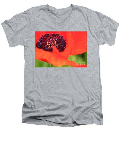 Red Poppy Men's V-Neck T-Shirt by Linda Bianic