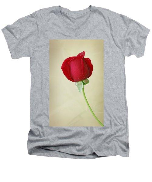 Red Rose On White Men's V-Neck T-Shirt by Sandy Keeton