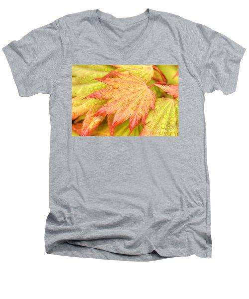 Red Tip Leaf Men's V-Neck T-Shirt
